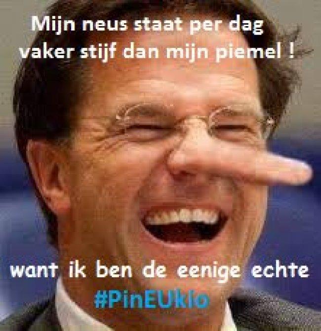 Mijn neus staat per dag vaker stijf dan mijn piemel, want ik ben de eenige echt PinEUkio (fot twitter) (foto Twitter)
