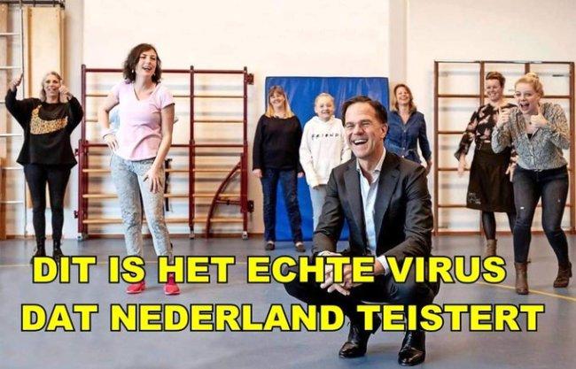 Het echte virus, dat Nederland teistert (foto Twitter)