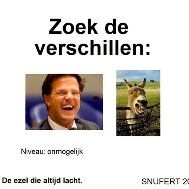 Zoek de verschillen   Niveau onmogelijk De ezel, die altijd lacht (foto Yoors)