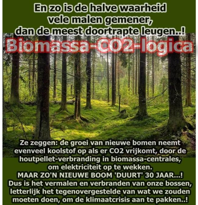 Boomkap en houtstook biomassa is zeer slecht voor-flora en fauna (foto Twitter)