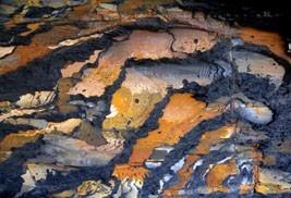 Intriguing Rocks