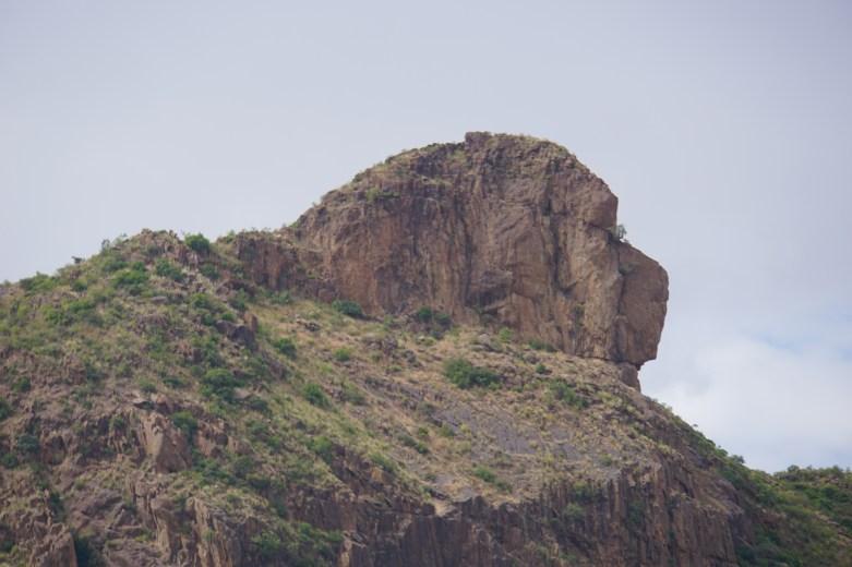 Lion Mountain. Looks more like a Newfoundland Dog