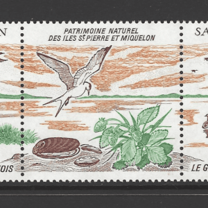 SG 596a, Unmounted Mint, St Pierre et Miquelon Stamps