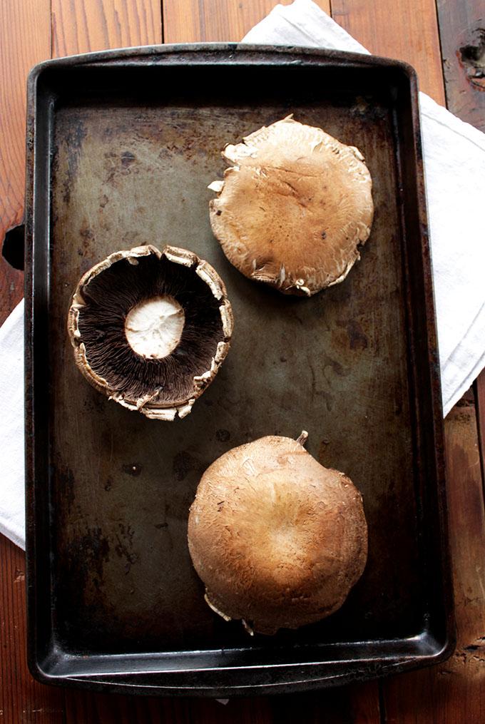 Portobello Mushrooms for Zucchini and Protobello Steak Fajitas.