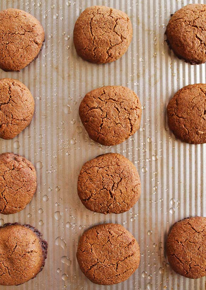 Soft and Chewy Gingerbread Cookies  that are packed with a good ginger-y flavor. They are vegan and gluten free making them the perfect cookie recipe to share! They're also SUPER EASY to make! The ultimate Christmas cookie! So in LOVE! | robustrecipes.com