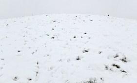 snow-northolt-edit-058-lowres