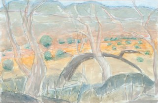 Homestead Creek I_2016_pastel and washl on Hahnmuhle paper_80x120cm