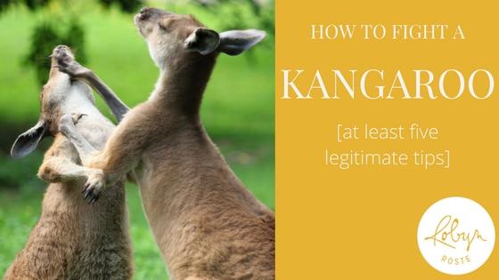 how to fight a kangaroo