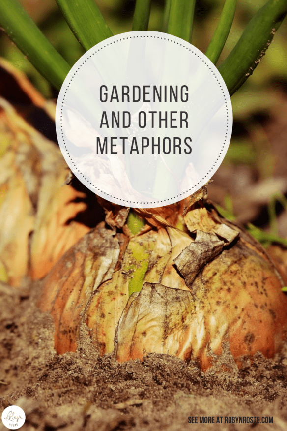 This is a post about gardening and other metaphors that occurred to me once I started trying to learn how to vegetable garden. Sigh.