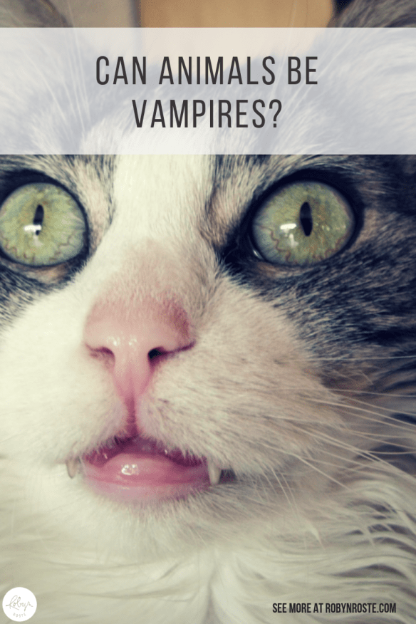 The question of the day is can animals be vampires? I mean, you've wondered this before right? Let's get to the answer. Strictly speaking, no. But yes.