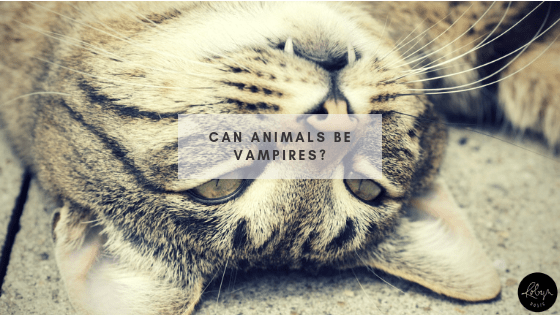 Can Animals be Vampires