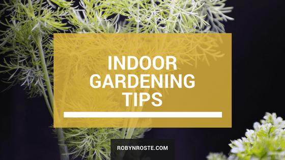 indoor gardening herb tips