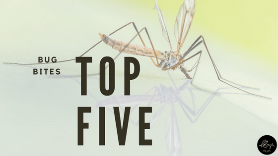 bug bites top five