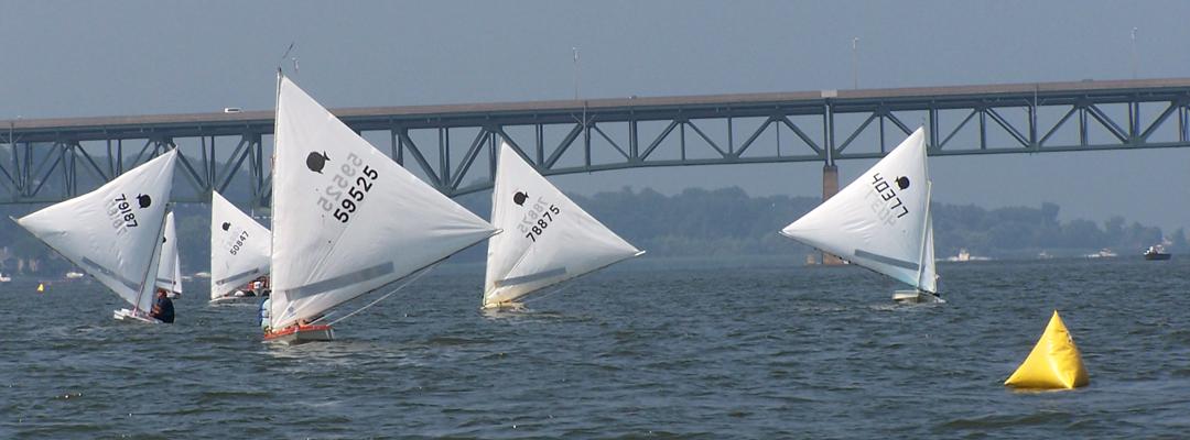 Sunfish Racing on Ironedquoit Bay