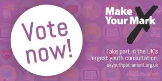 Vote Now in Make Your Mark 2017!
