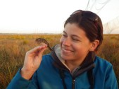 Emily (Pipher) Angell grew up in Greece, NY and is now a red-cockaded woodpecker biologist for Archbold Biological Station in central Florida.