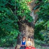 Meditando Juntas
