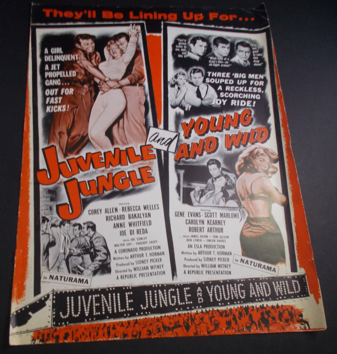 juvenile jungle - young and wild pressbook