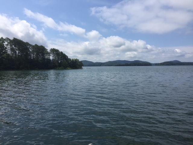 Cherokee lake looking left from dock