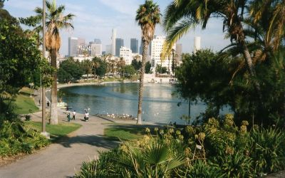 MacArthur Park – Don't leave your cake out in the rain here