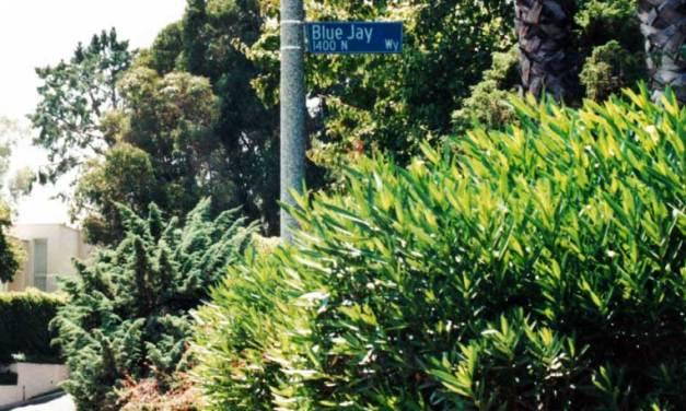 George Harrison's Rental Home on Blue Jay Way, Los Angeles, CA