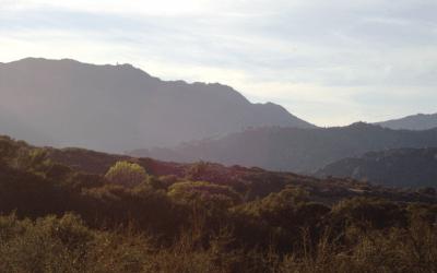 Topanga Canyon