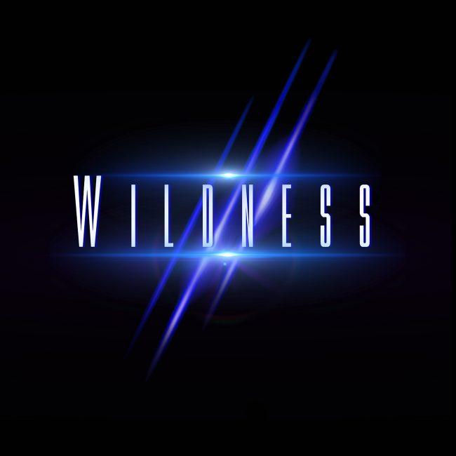 WILDNESS – Wildness (2017)
