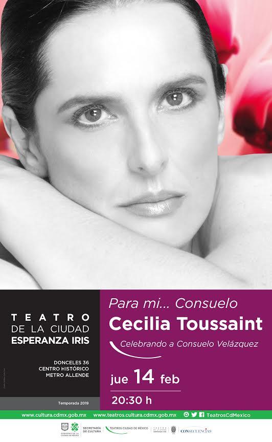 Consuelo para todos… por Cecilia Toussaint