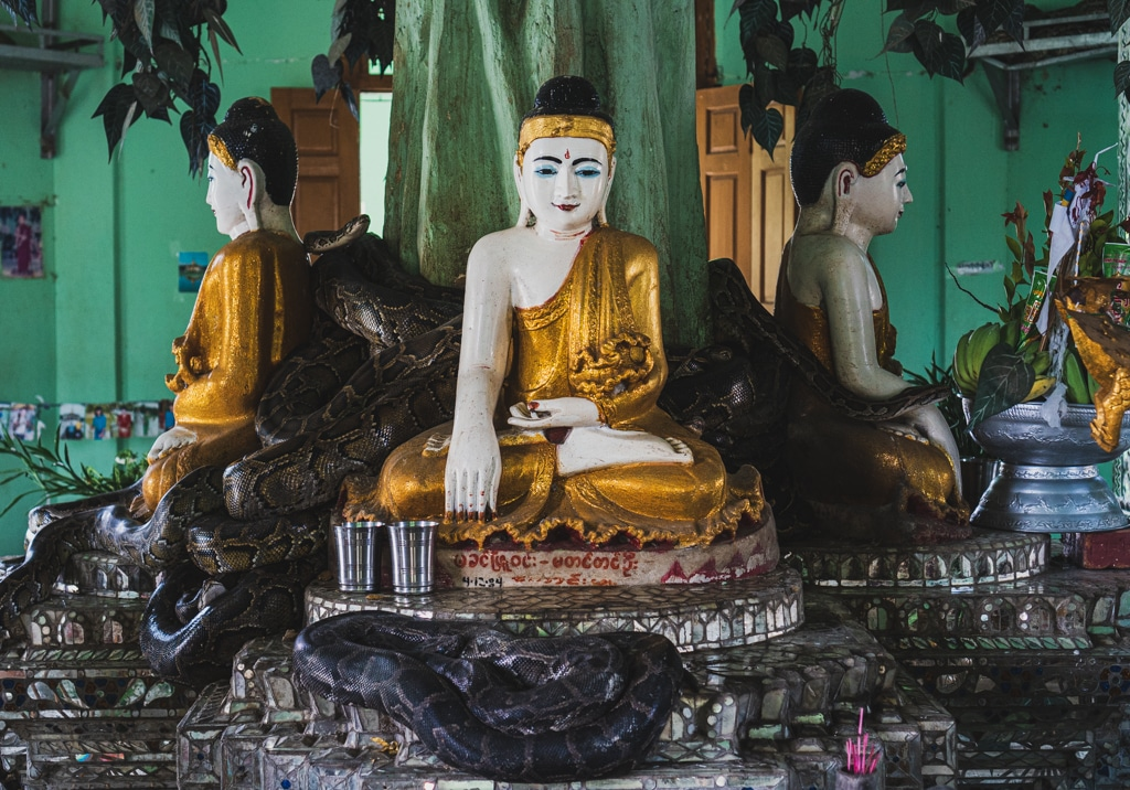 Pagode aux serpents, Yangon