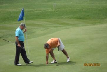 Buena Vista golf association proposes pavilion for troubled course