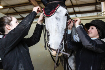 Virginia Horse Center preparing for new event this June