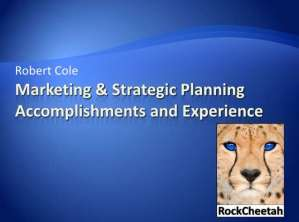 Marketing and Strategic Planning Experience