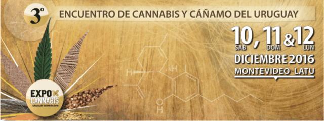expocannabis_2016_maryjuana-1024x383