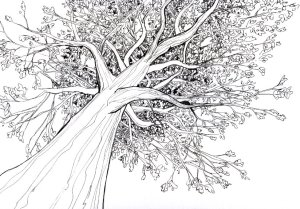 Try to draw tree like this