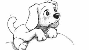 How to draw a cute looking realistic puppy dog face.