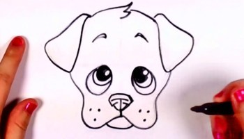 How To Draw Puppy Step By Step For Beginners And Kids Step By Step