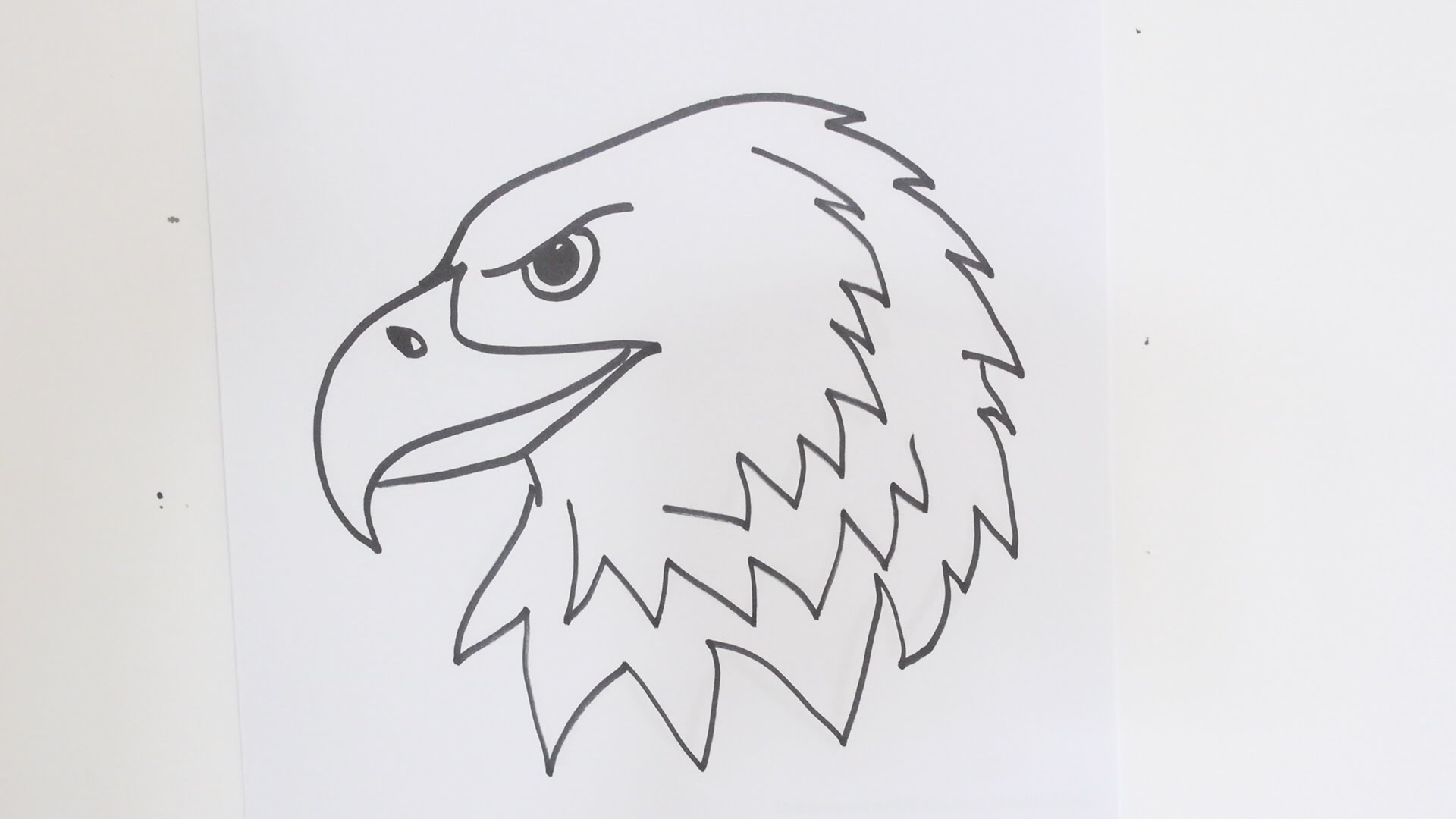 A drawing of eagle look like this you can sketch better