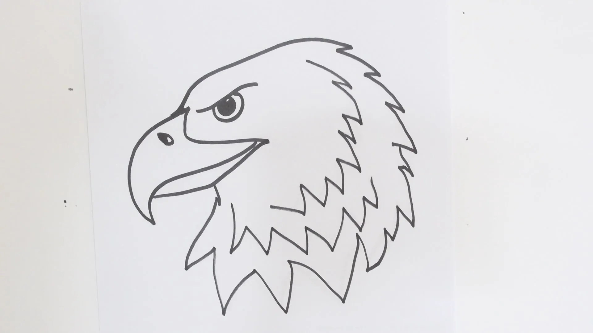 How to draw an eagle step wise