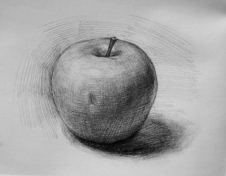 how to draw shade realistic looking apple step wise beginners