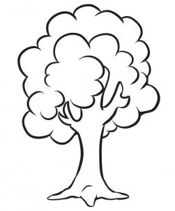 how to draw and sketch a simple tree - Simple Sketch For Kids