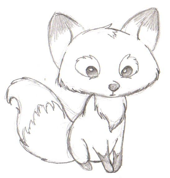 How to draw a cartoon fox step by step for beginners