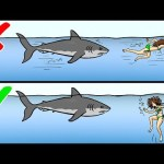 13 Tips on How to Survive Wild Animal Attacks