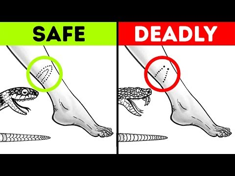 12Tips That Will Save Your Life inaCritical Situation