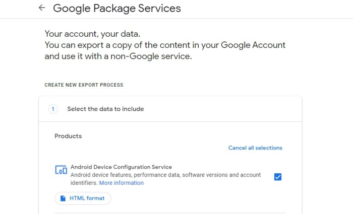 Google Package Services