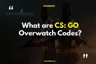 What are CS GO Overwatch Codes-