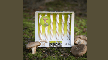 Mushroom candy canes 1