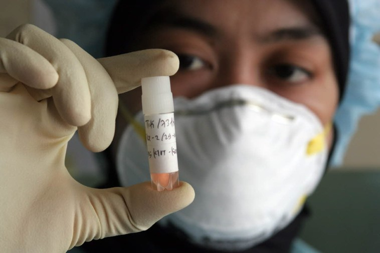 Which disease became a pandemic in 2009?