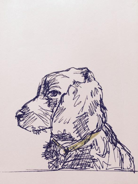 Jeffy sketch