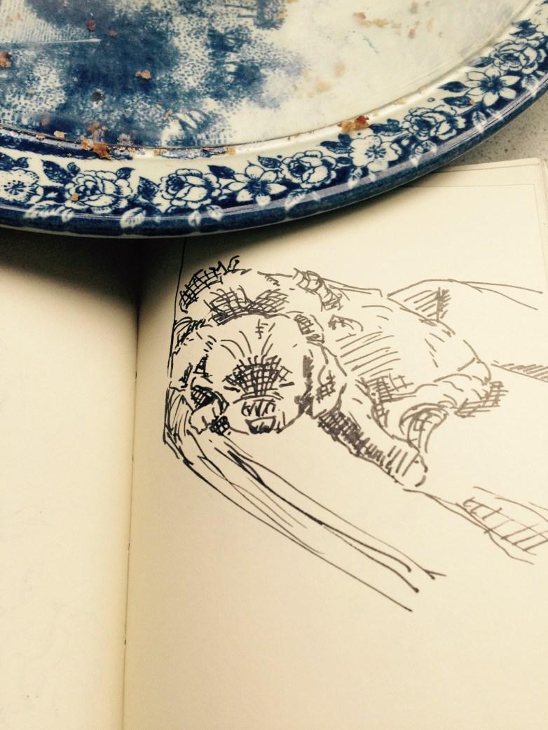 sleeping Alfie from sketchbook