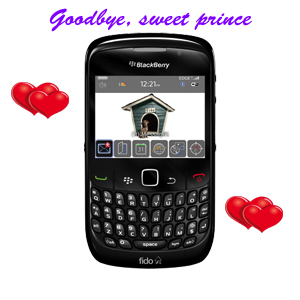 blackberry curve with hearts